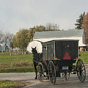 Amish Buggy Poster by David Arment