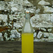 A Bottle Of Limoncello Sits On A Picnic Poster by Todd Gipstein