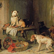 A Jack In Office Poster by Sir Edwin Landseer