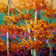 Abstract Autumn IIi Poster by Marion Rose