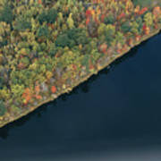 An Aerial View Of A Forest In Autumn Poster by Heather Perry