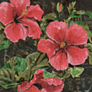 Antique Hibiscus Black 2 Poster by Debbie DeWitt