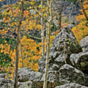 Aspens Rocks And Longs Peak Poster by Brent Parks