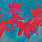 Autumn Crimson Poster by William Jobes
