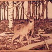 Autumn Deer Poster by Andrew Siecienski