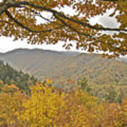 Autumn In The Smokies Poster by Michael Peychich