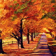 Autumn In Vermont Poster by David Lloyd Glover