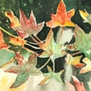 Autumn Leaves Poster by Arline Wagner