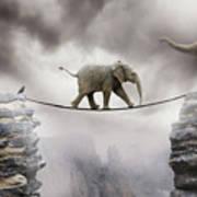 Baby Elephant Poster by by Sigi Kolbe