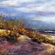 Beach Dune 1 Poster by Peter R Davidson