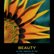 Beauty Poster by Bonnie Bruno