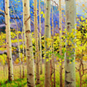 Beauty Of Aspen Colorado Poster by Gary Kim