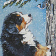 bernese Mountain Dog puppy and nuthatch Poster by Lee Ann Shepard