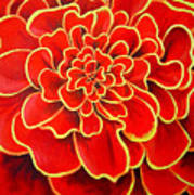 Big Red Flower Poster by Geoff Greene