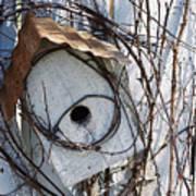 Birdhouse Brambles Poster by Lauri Novak