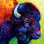 Bison Head Color Study IIi Poster by Marion Rose