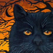 Black Cat And Moon Poster by Linda Apple