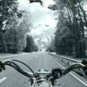 Blue Harley Poster by Micah May