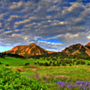 Boulder Spring Wildflowers Poster by Scott Mahon