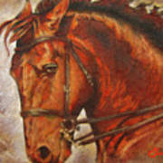 Caballo I Poster by Jose Espinoza