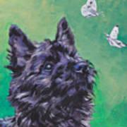 Cairn Terrier Poster by Lee Ann Shepard