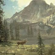 Call Of The Wild Poster by Albert Bierstadt