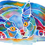 Calypso Cat Poster by Jo Lynch