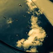 Canvas Seagulls Poster by Bob Orsillo