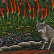 Cat - Bob The Bobcat Poster by Carol Wilson