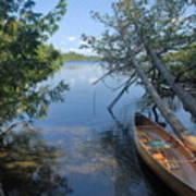 Cedar Strip Canoe And Cedars At Hanson Lake Poster by Larry Ricker