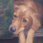 Charlie's In The Doghouse Poster by Diane Caudle