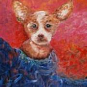 Chihuahua Blues Poster by Nadine Rippelmeyer