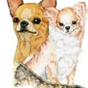 Chihuahuas Poster by Kathleen Sepulveda