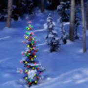 Christmas Tree In Snow Poster by Utah Images