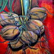 Coconuts Poster by Patti Schermerhorn