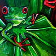 Curious Tree Frog Poster by Patti Schermerhorn