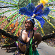 Dc Caribbean Carnival No 12 Poster by Irene Abdou