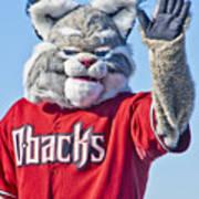 Diamondbacks Mascot Baxter Poster by Jon Berghoff