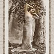 Dream Of The Night Poster by Mary Morawska