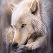 Dreamscape - Wolf Poster by Sandi Baker