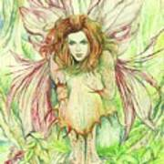 Edana The Fairy Collection Poster by Morgan Fitzsimons