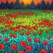 Evening Poppies Poster by John  Nolan