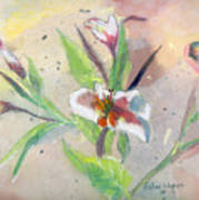 Faded Lilies Poster by Arline Wagner
