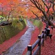 Fall Colors Along Bending River In Kyoto Poster by Jake Jung
