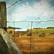Field Of Freshly Cut Bales Of Hay Poster by Sandra Cunningham
