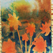 Fire Storm In The Wild Flower Meadow Poster by Amy Bernays