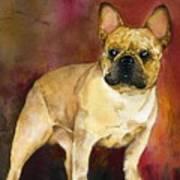 French Bulldog Poster by Kathleen Sepulveda