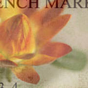 French Market Series J Poster by Rebecca Cozart
