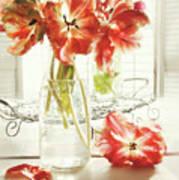 Fresh Spring Tulips In Old Milk Bottle  Poster by Sandra Cunningham