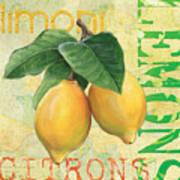 Froyo Lemon Poster by Debbie DeWitt